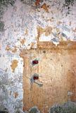 grungestuckaturvägg Arkivfoto