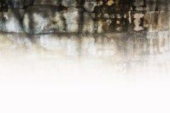Grungetexturer av väggbakgrunden Royaltyfri Fotografi