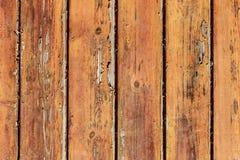 Grungeträplankabakgrund Arkivfoton