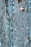 Grungeväggen texturerar Royaltyfria Foton