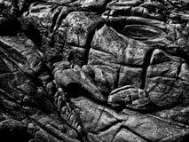 Grungey vaggar på Flindersön fotografering för bildbyråer