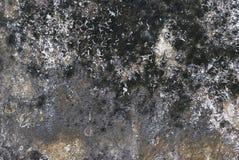 Grungs-Wandbeschaffenheit Stockbilder