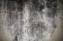 Grungy запятнанная бетонная стена с отказами и прессформой стоковые фото