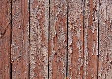 Grungy коричневая текстура загородки цвета Стоковое Изображение