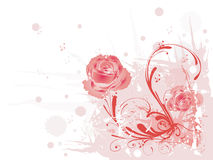 grungy розы Стоковое Изображение