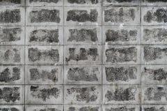 Grungy стена бетонной плиты стоковые изображения rf