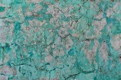 Grungy стена гипсолита Стоковые Фотографии RF