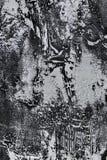 Grungy стена гипсолита Стоковое Изображение