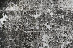 Grungy стена гипсолита Стоковое Изображение RF
