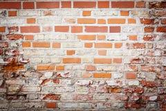 grungy стена улицы Стоковое Фото