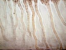 Grungy текстура с пятном воды Стоковые Изображения