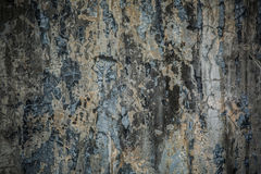 Grungy треснутая стена цемента Стоковые Изображения RF