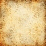 grungy фона флористическое Стоковая Фотография RF