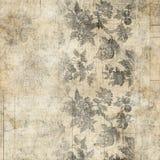 Предпосылка Grungy античного сбора винограда флористическая Стоковые Фото