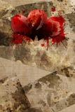 Grungy achtergrond en bloed van hart royalty-vrije illustratie
