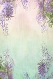 Grungy achtergrond met bloemengrens Royalty-vrije Stock Foto's