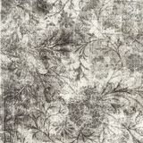 Grungy Antique Vintage Floral Background Royalty Free Stock Photo