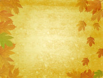 Grungy autumn background Stock Photos