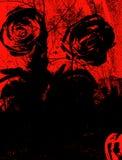 Grungy background. Black roses Stock Photos