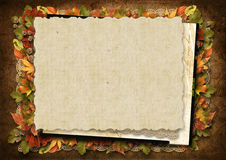 Grungy background with beautiful autumn decorations Royalty Free Stock Photos