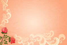 Grungy background peach color with roses. Grungy pink background , decorated with two roses and swirls Stock Images