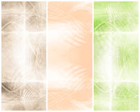 Grungy Backgrounds. Some delicate grungy Backgrounds in 3 neutral and soft color nuances Royalty Free Stock Image