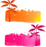 Grungy backgrounds with palm trees. And halftone elements - orange and pink Royalty Free Stock Image