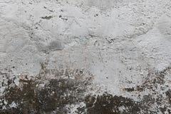 Grungy biała i popielata ścienna tekstura Obraz Stock