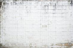 Grungy biel ściana Fotografia Royalty Free