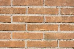 Grungy brick wall Royalty Free Stock Image