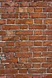 Grungy brick wall Royalty Free Stock Photos