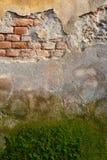 Grungy Brick Wall Stock Image