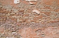 Grungy brick wall texture Royalty Free Stock Images
