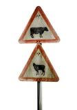 Grungy BRITISCHES Vieh-Warnzeichen Lizenzfreie Stockfotografie