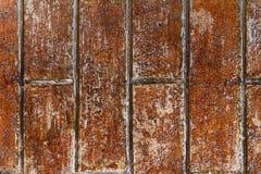 Grungy brown ściana z cegieł tekstura Obrazy Stock