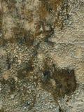 Grungy & brudny siwieje betonową teksturę zdjęcia royalty free