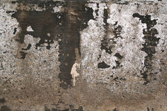 Grungy concrete wall Royalty Free Stock Images