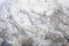 Grungy concrete wall. Royalty Free Stock Photos