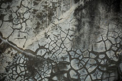 Grungy Cracked cement wall. For backdrop Stock Images