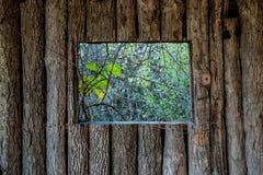 Grungy drewniane tekstury Fotografia Stock