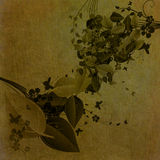 Grungy floral background Royalty Free Stock Photo