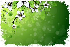 Grungy Floral Background Stock Image