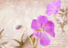 Grungy floral retro background. Postcard template. Royalty Free Stock Photos