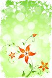 Grungy Flower Background Royalty Free Stock Images