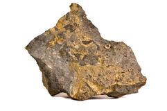 Grungy fossil rich marine rock Royalty Free Stock Photography