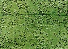 Grungy grön rubber yttersida med bubblor och skrapor Arkivfoton
