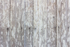 Grungy gray wood plank wall texture background. Stock Photos