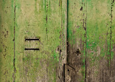 Grungy Green Door. Detail of a green old wooden door with mail slots Stock Photo