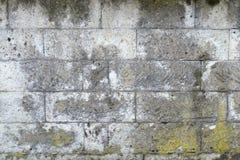 Grungy grijze textuur van de steenmuur Royalty-vrije Stock Foto's
