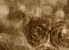 Grungy hälsningkort, valentin dagkort med rosor Arkivfoto
